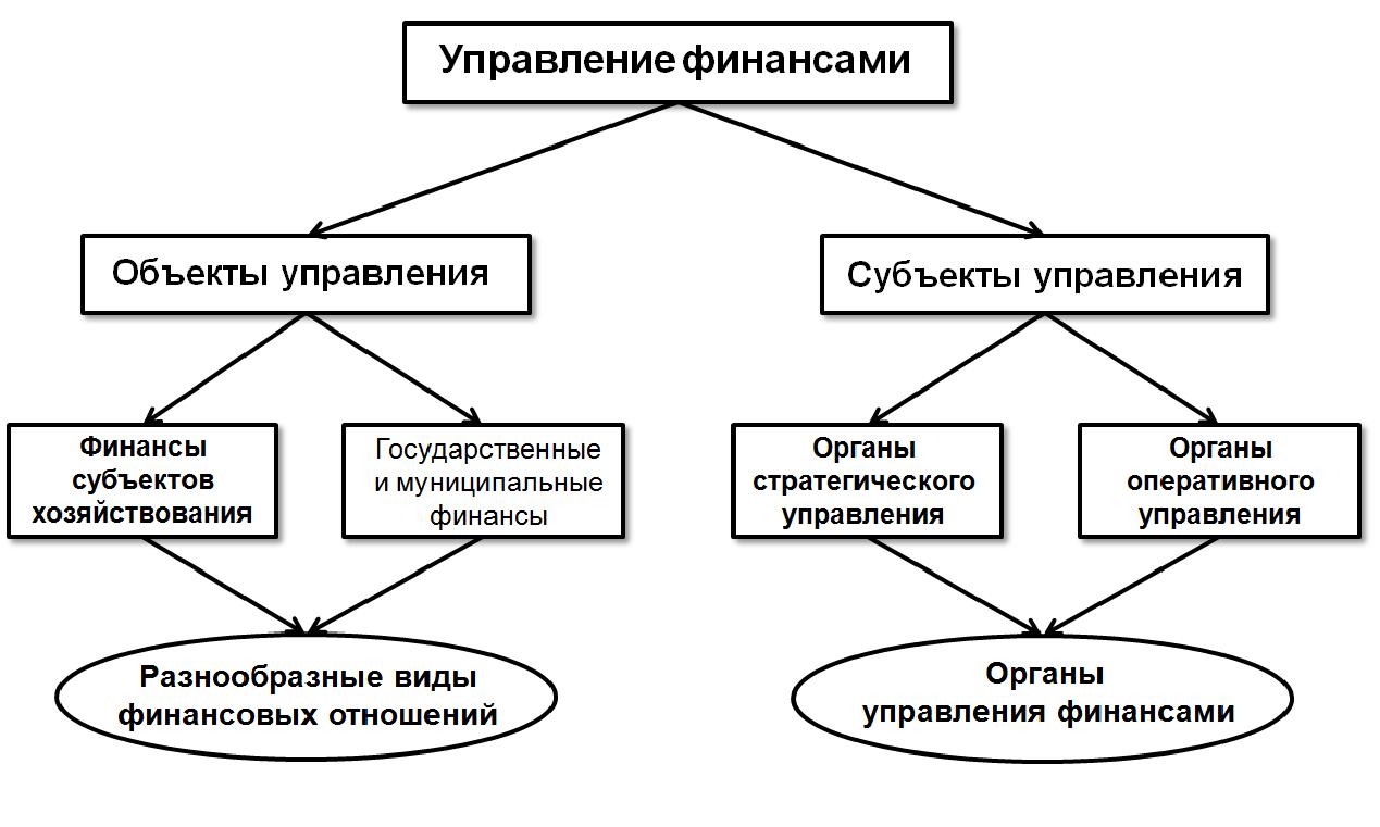 субъекты управления финансами некоммерческих организаций