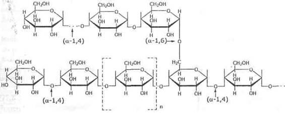 циклические формулы крахмала и гликогена ящики, щиты, стенды