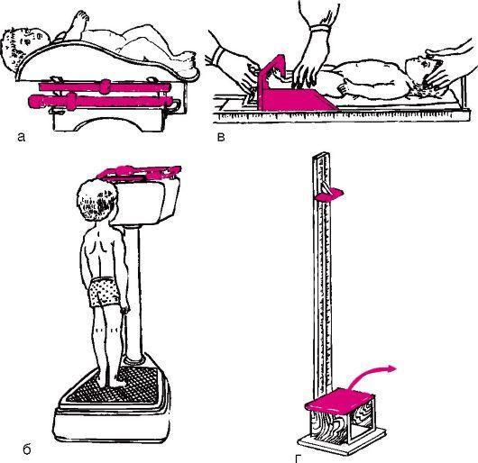 Медицинская сестра или врач правой рукой перемещают гири весов, а левой страхуют ребенка от падения.