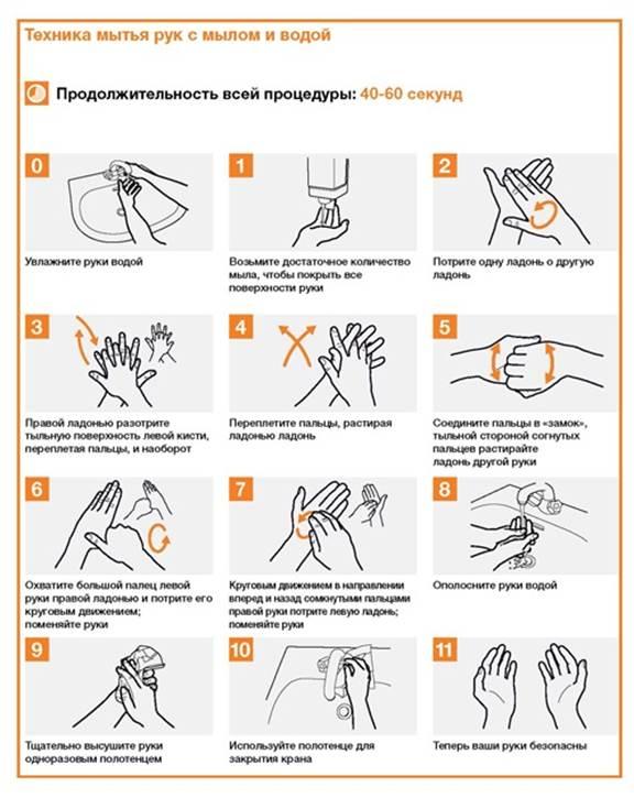 активный уровни мытья рук с картинками биографии, фильмографии, тайнах