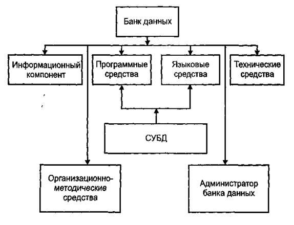 Примеры натуральной системы кодирования