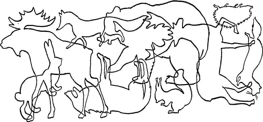 Логопедическое задание на тему дикие животные и их детёныши