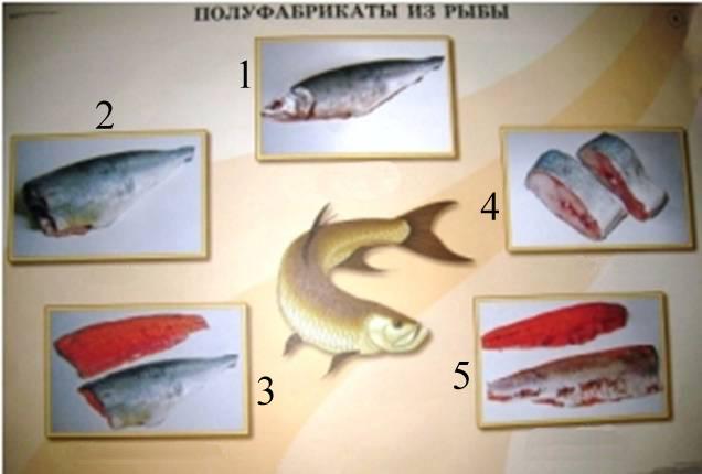 Блюда из рыбы, в употреблении которой нуждается организм каждого существа, живущего на планете, являются одной из главных составляющих рациона.