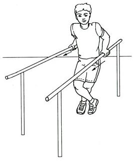Картинки упражнения на брусья
