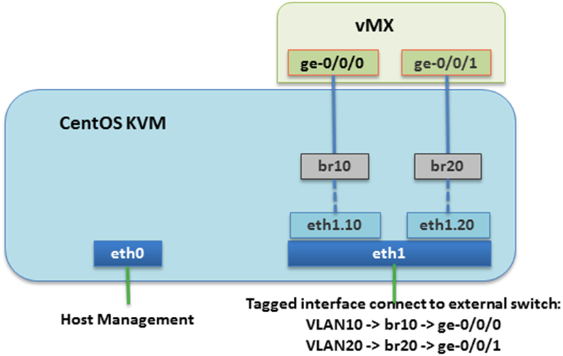 Blind VLAN tag interface into vMX