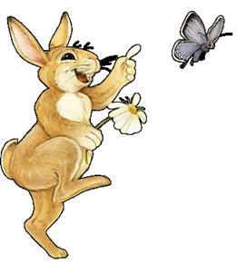 Картинка зайчонок прыгает на прыгалке