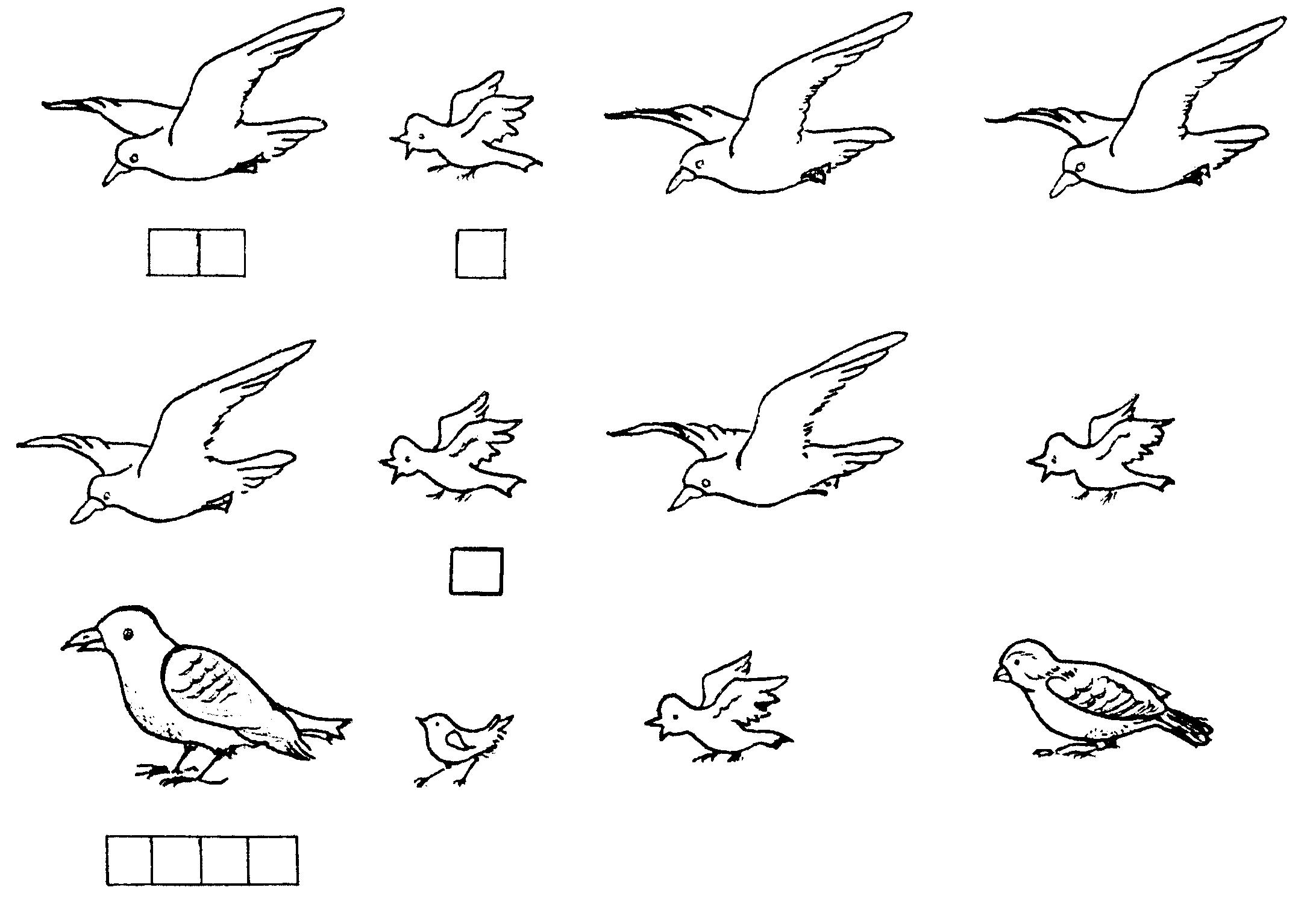 местными раскраски перелетных птиц с картинками сделать приятное
