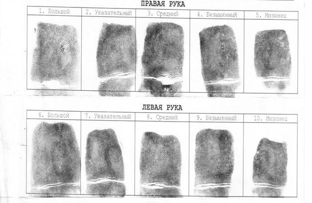 понятие дактилоскопии. следы рук человека. шпаргалка