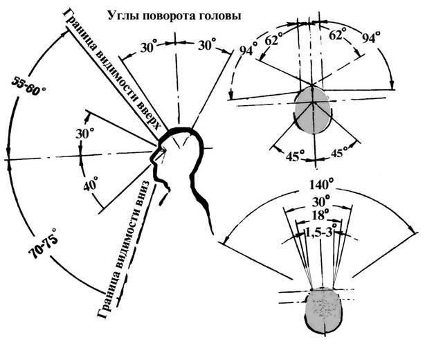 Студопедия — форм, цвет, фактура материала.