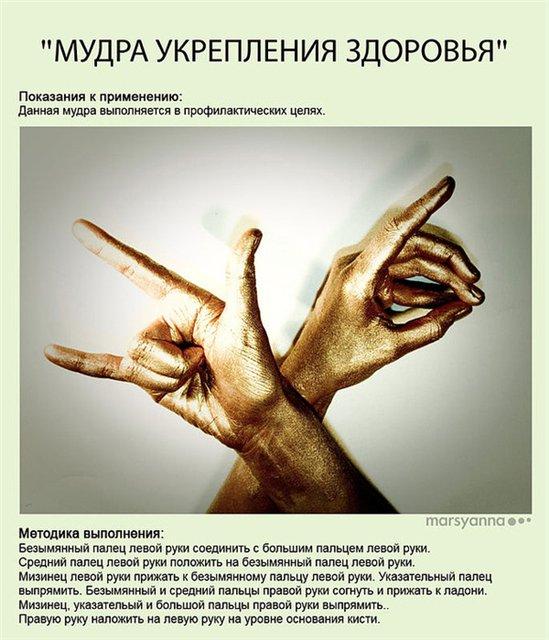 МУДРЫ (картинки) Image031