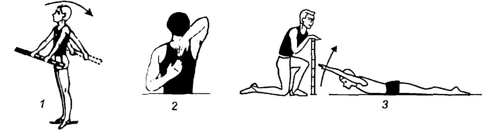 Как определить подвижность суставов основные элементы сустава человека