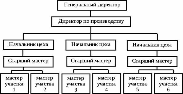 Линейная структура организации схема фото 627