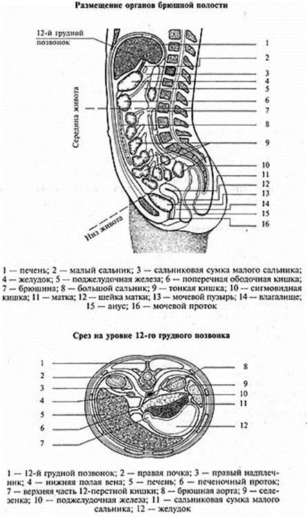 bolshoy-salnik-zheni-kamshot-na-rabote