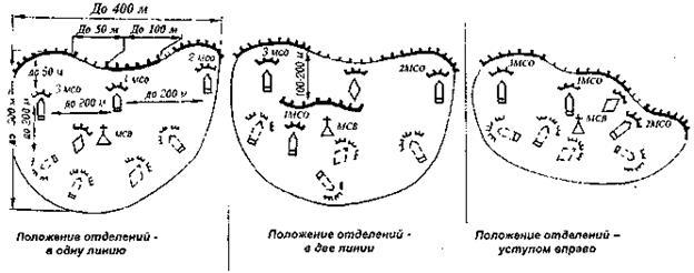 Системы опорных пунктов и огневых позиций десантной роты