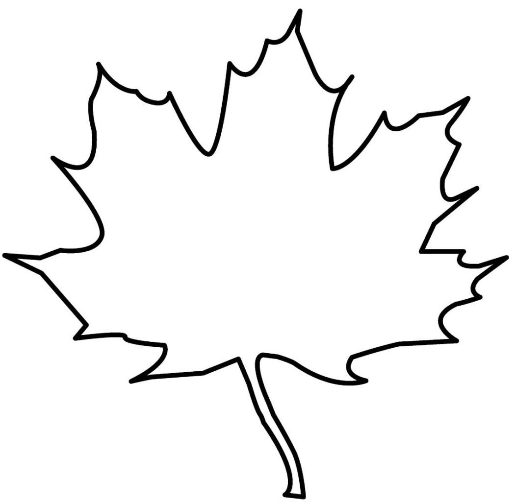 Черно белая картинка лист клена