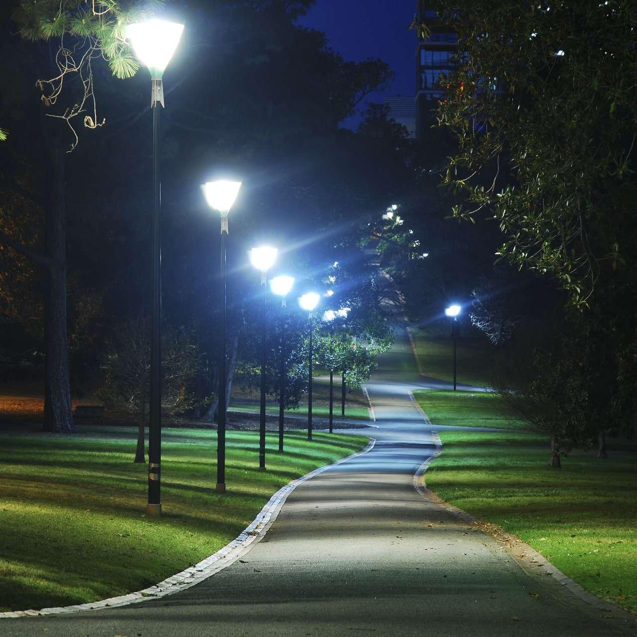 Сделать открытку, картинки красивая ночь в парке
