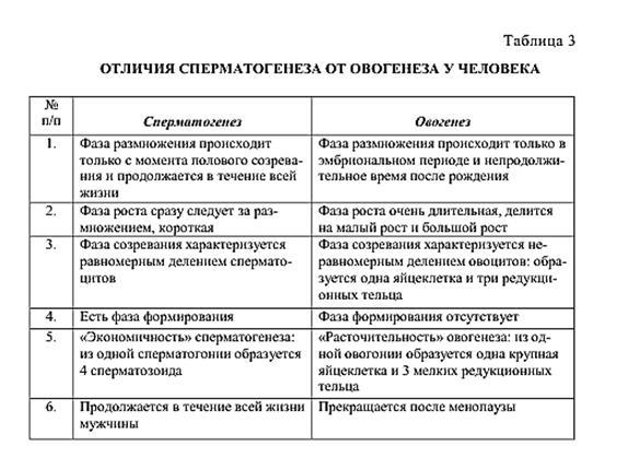 Отличия оогенеза от сперматогенеза