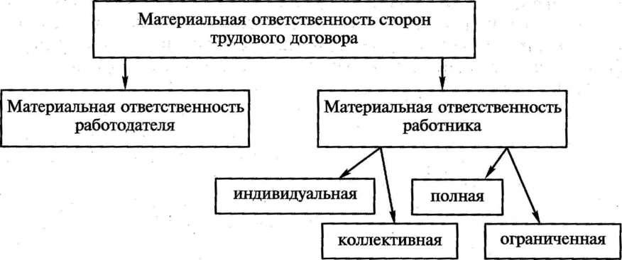 Схема виды трудового договора фото 660