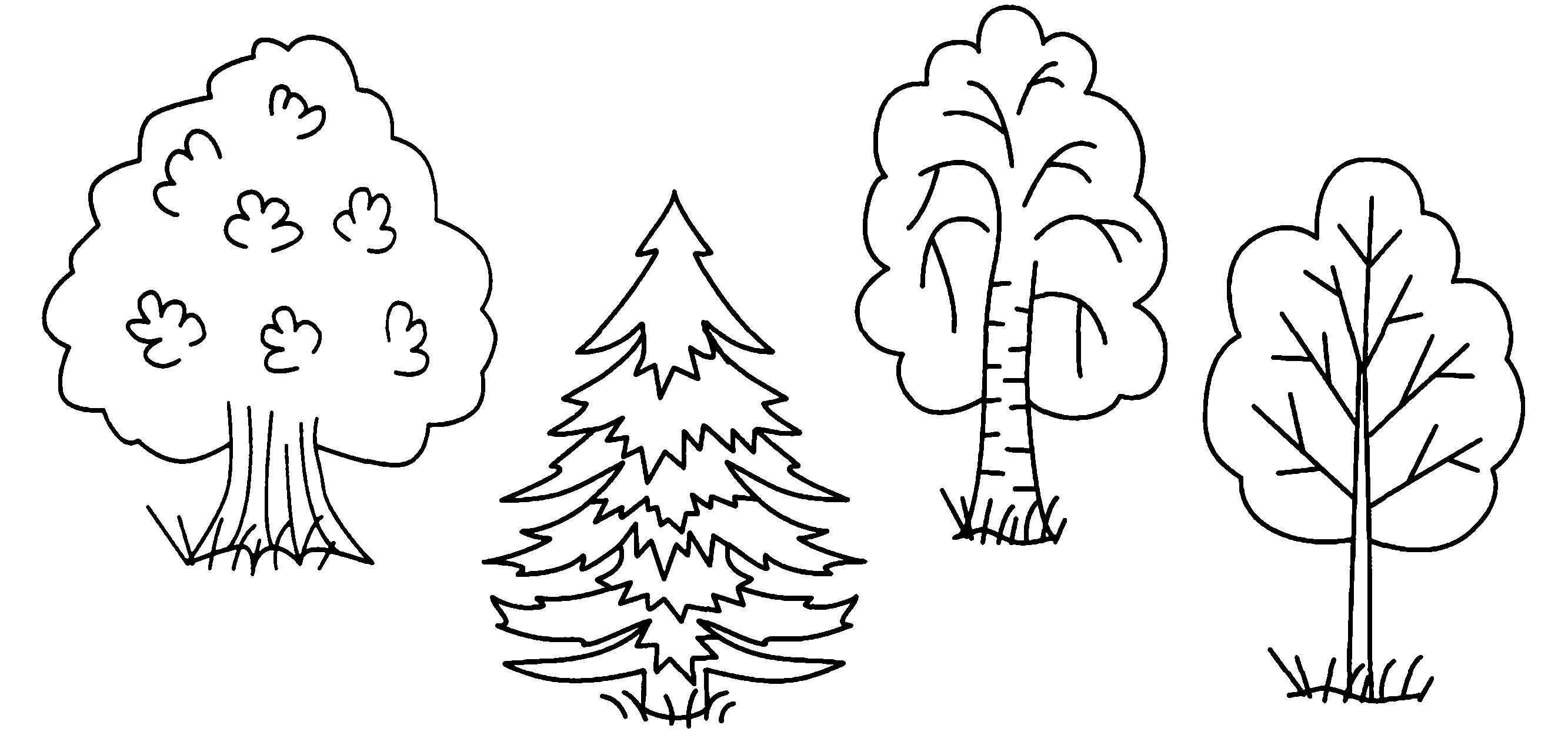 картинки с контурным изображением деревьев что, рад