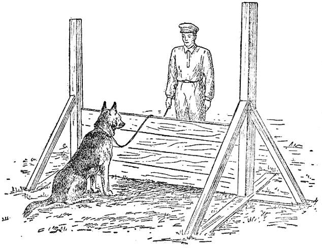 дерево рисунки кинолога с собакой изготовить своими руками